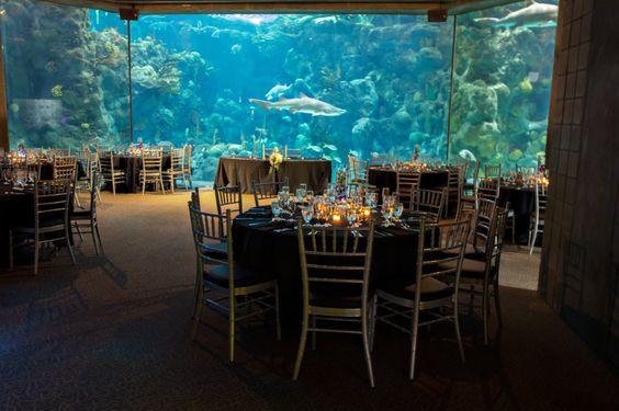 Florida Beach Wedding With Aquarium Reception: Fish Tank Wedding Reception
