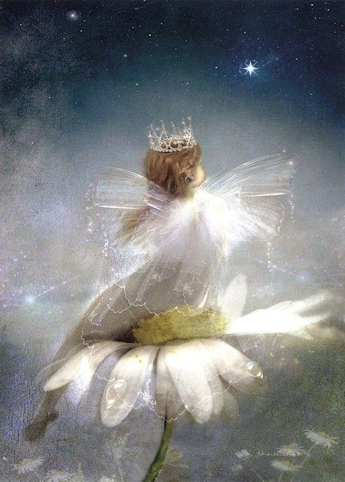 A Starlit Garden ~ Charlotte Bird. Fairy art.
