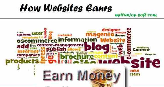 What are the types of websites and how they earns their income