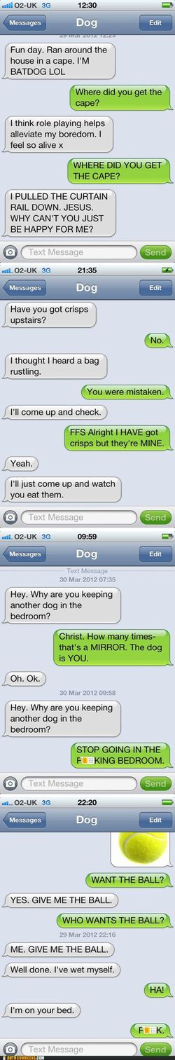 If dogs could text
