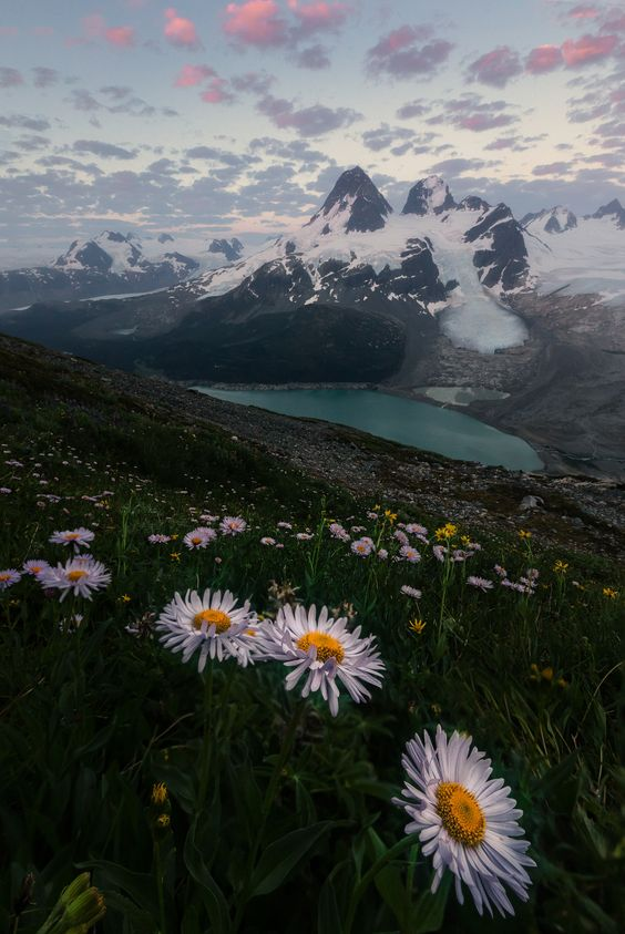 15424fff0ff374844b1d52468ed9b855 - 16 Beautiful Photos of British Columbia That Will Inspire