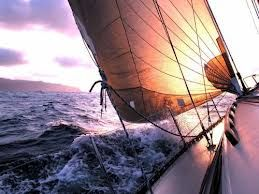 Navegando...