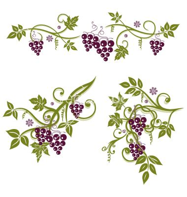 Grape Vine Border Vine grapes border vector | Quilling ...