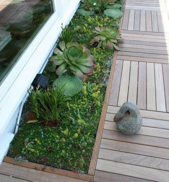 deko ideen für den garten mit sukkulenten - frisch und belebend, Garten Ideen
