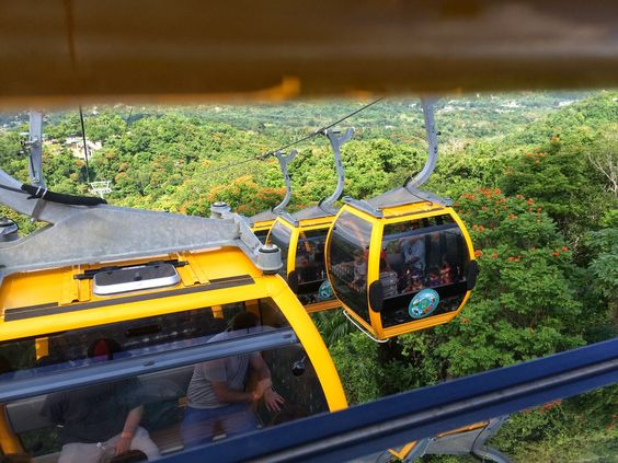 The Wandering  Soldier : Puerto Rico:  A Visit to Parque Forestal La Maques...