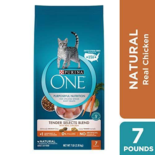 Top 10 Best Cat Foods In 2019 Buying Guide Fiveid Com Cat Food Brands Dry Cat Food Cat Food