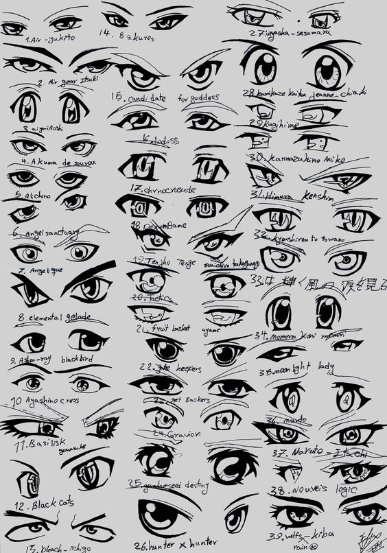 Fma eye reference sheet woah 0 0 so many eyes fur elise anime eyes 3 5 ccuart Image collections