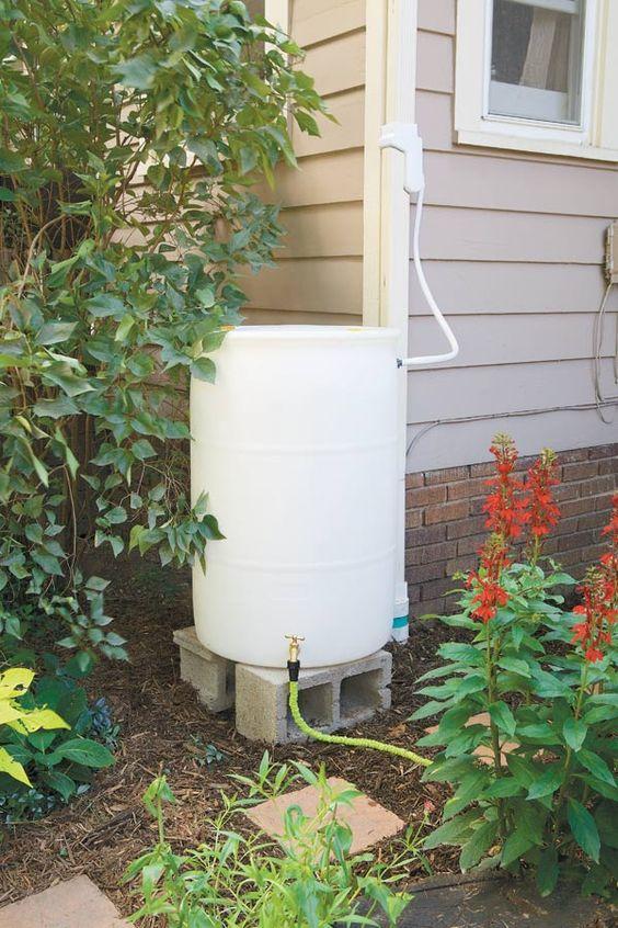 How to make a rain barrel rain barrels raised gardens for Diy small rain barrel