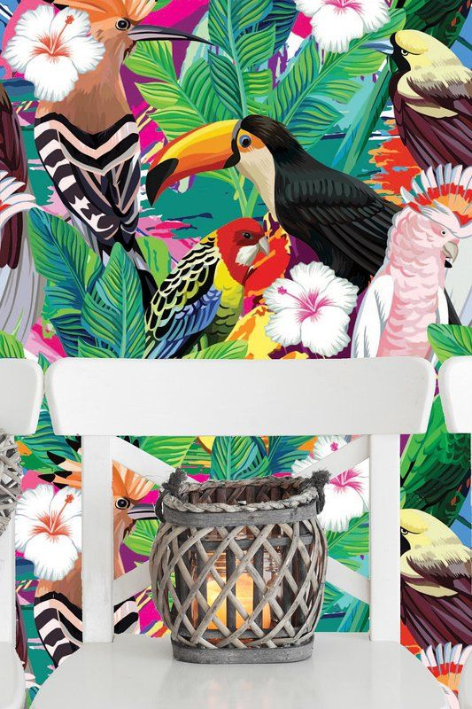 Argonaut Removable Composition Tropical Bird Toucan Parrot 6 25 L X 25 W Peel And Stick Wallpaper Roll In 2020 Tropical Birds Peel And Stick Wallpaper Mural Wallpaper