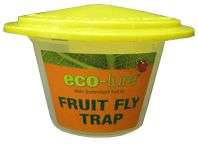 Qld Fruit Fly Trap