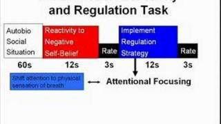 Cognitive Neuroscience of mindfulness meditation