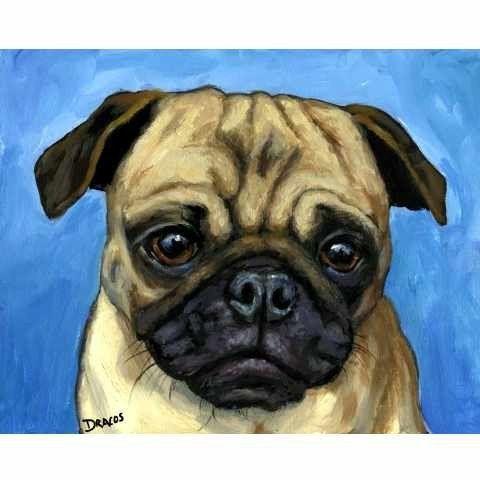 Pug On Lt Blue Dog Art Print Of Original Painting By Dottie Dracos