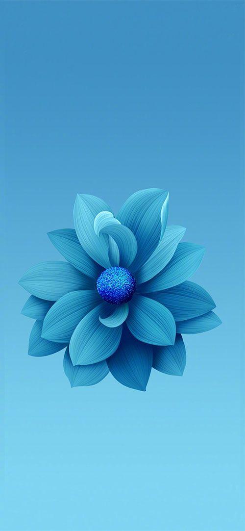 Pinofy Net Xiaomi Wallpapers Blue Flower Wallpaper Flower Phone Wallpaper