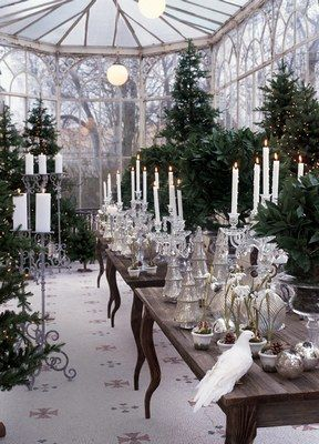Christmas Eve in the Conservatory.