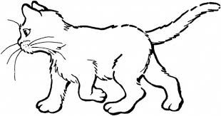 image result for kucing artwork hitam putih pinterest