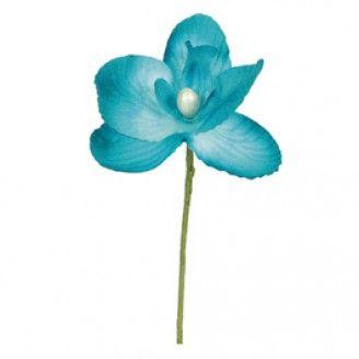 Orchidée Turquoise - Santex