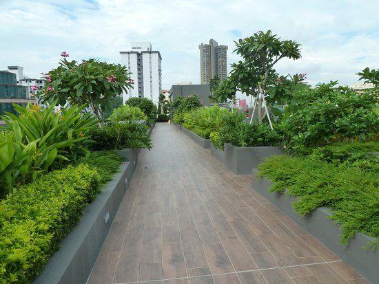 Singapore Rooftop Garden Corporate Google Search Rooftop Garden Rooftop Singapore