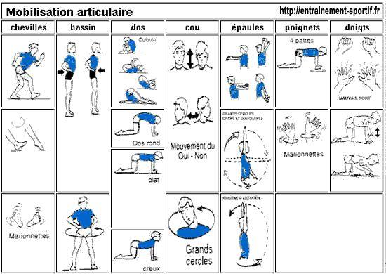 Échauffement en sport   Musculation spécifique   Principes