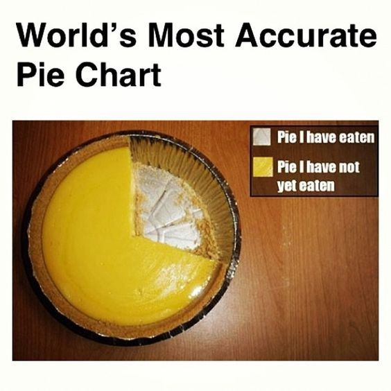 The worlds most accurate pie chart.