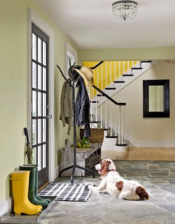Harry the springer spaniel patiently waits for his family to come home. #dogs #decoratingideas