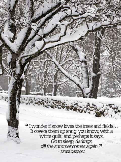 24 Famous Quotes To Bookmark Snow Quotes Winter Quotes Famous Quotes