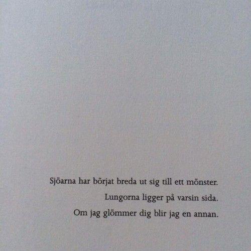 magnolior - Ida Linde:
