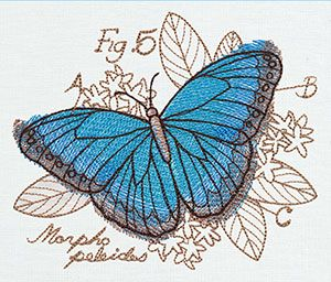 Miniature Menagerie Butterfly Diagram - Thread List | Urban Threads: Unique and Awesome Embroidery Designs