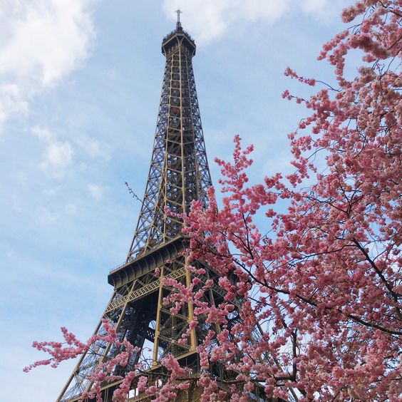 Paris in #spring #DCmoments