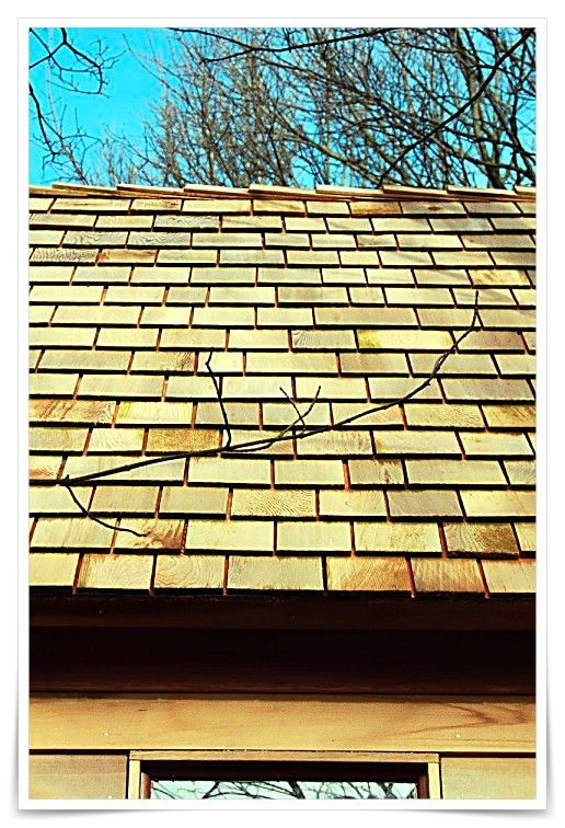 Pin On Roofing Ideas Cheap