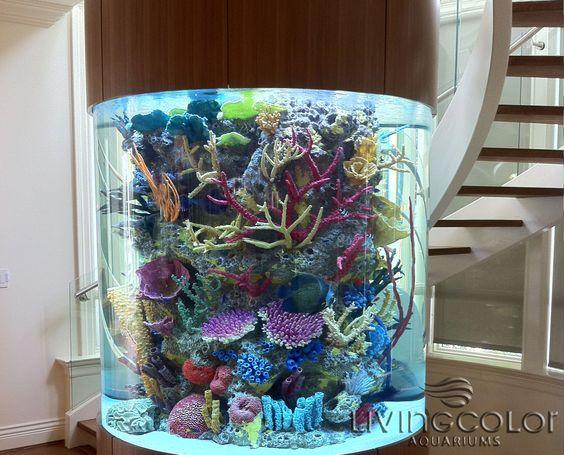 Custom Aquariums, Acrylic Tank Manufacturing, Aquarium Design, Custom ...