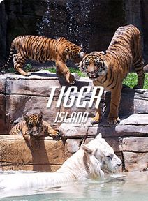 Visit and spend the money to play with the tigers - the Awesome Pawsome -YouTube it and watch and you'll add this to your list too!