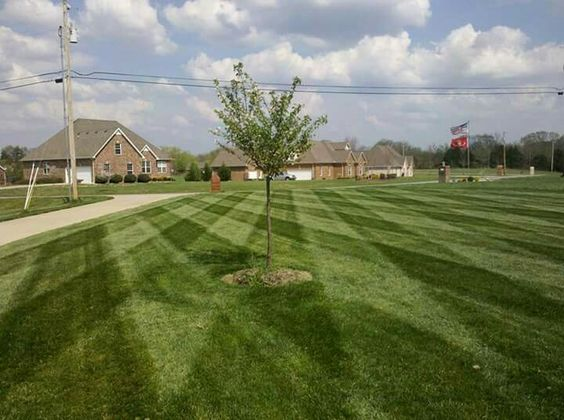Mowing with stripes