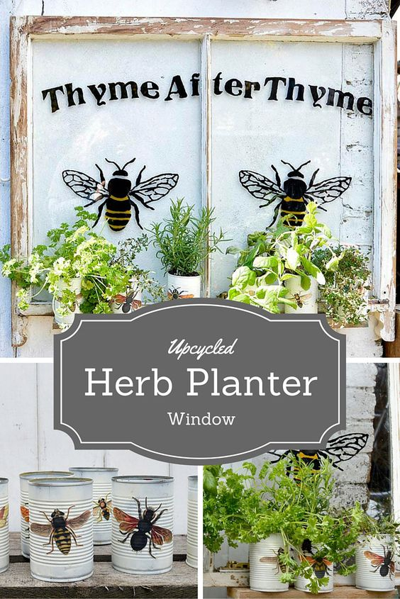 Upcycle window herb planter. Turn an old window and some tin cans into a stunning herb planter.  Free template download and instructions.