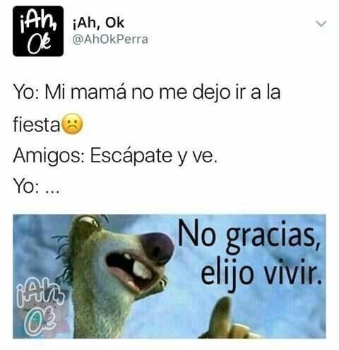 Gracias Por La Invitacion Pero Elijo Vivir Okey Memes Memes Divertidos Memes Espanol Graciosos