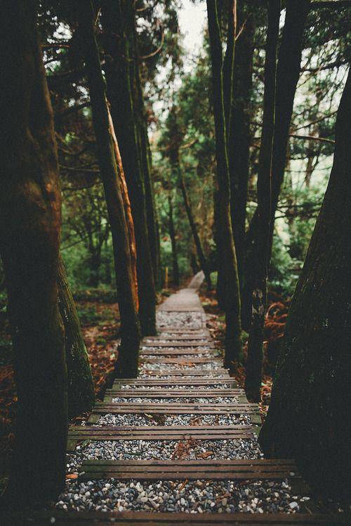 Escadas e caminhos <3