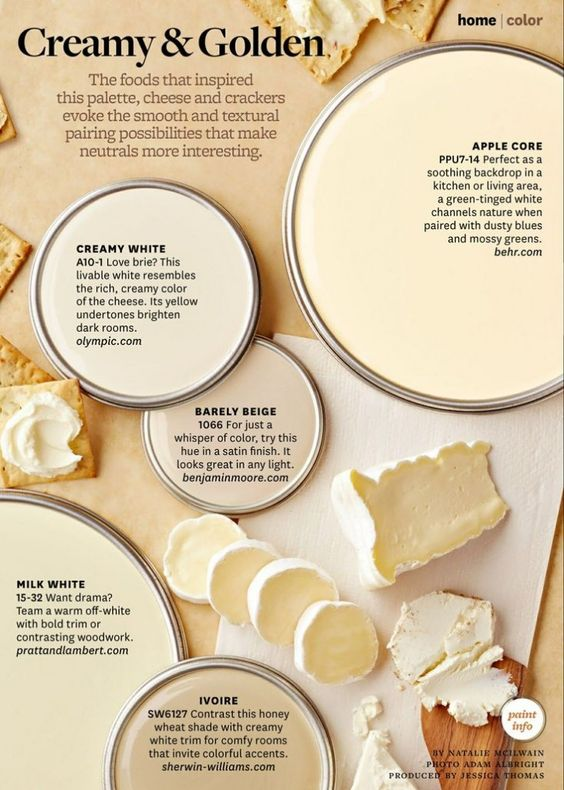 Paint Palette - Creamy and Golden