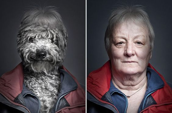 dogs dress up Sebastian Magnani 8
