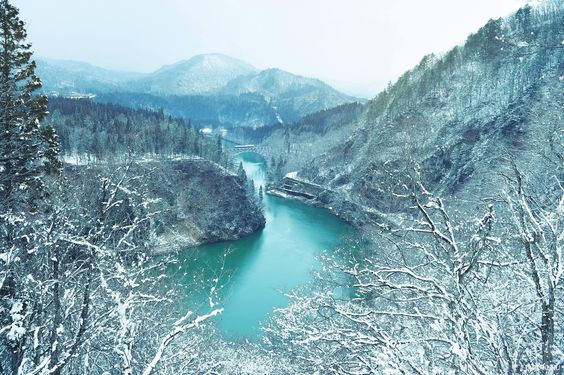 A fun Winter day-trip #beautiful #view #japan #travel #scenery #train #tadami #line #tourism #surreal #amazing #love #date #instajapan #snow #picoftheday