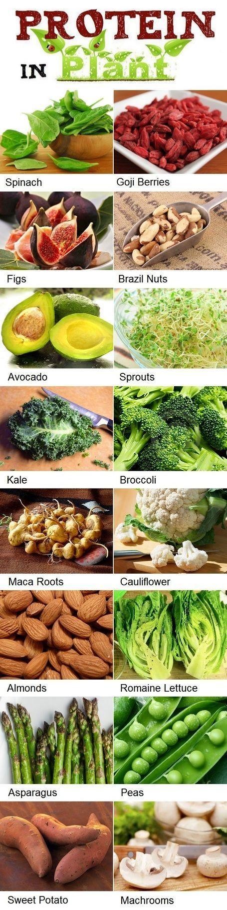 High Protein Foods List. Great for vegetarians or #MeatlessMondays