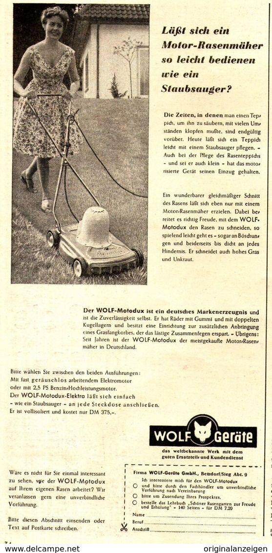 Original Werbung Anzeige 1959 Wolf Motor Rasenmaher Ca 125 X 250 Mm Werbung Rasenteppich Motor