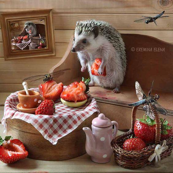 завтрак, прерванный неждаными гостями...