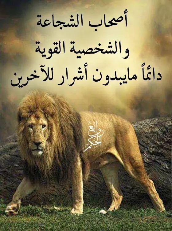 Pin By فلسطينية ولي الفخر On روائع الحكم Animals Lion