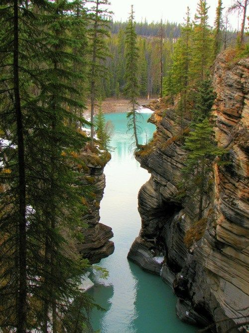 vacation travel photos - Jasper National Park, Alberta, Canada