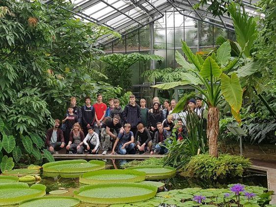 Botanischer Garten Bonn Botanischer Garten Bonn Botanischer Garten Garten