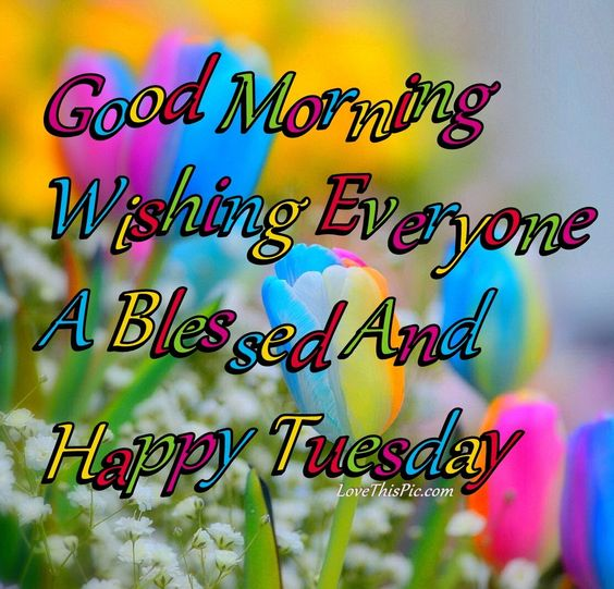 Good Morning Everyone In Norwegian : Good morning everyone have a blessed tuesday