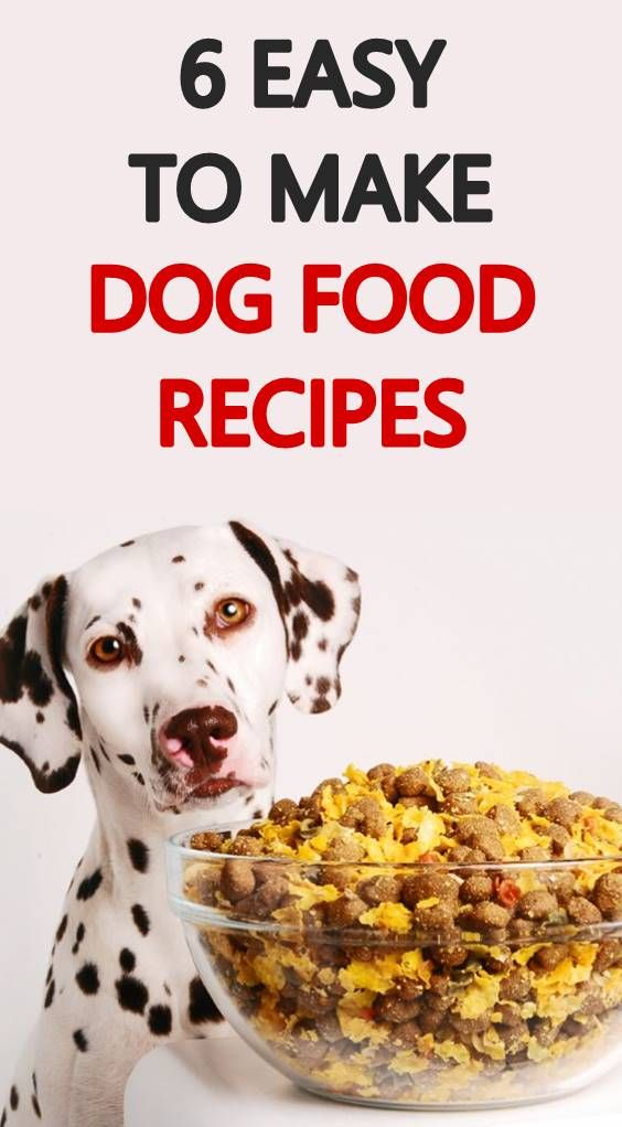 Whether You Cook For Your Dog Once In A While Or Everyday These