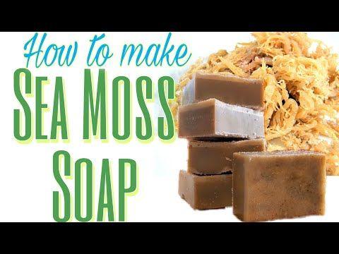 How To Make Sea Moss Soap Sea Soap Melt And Pour Soap Tutorial Youtube Soap Melt And Pour Sea Moss Clay Soap Recipe