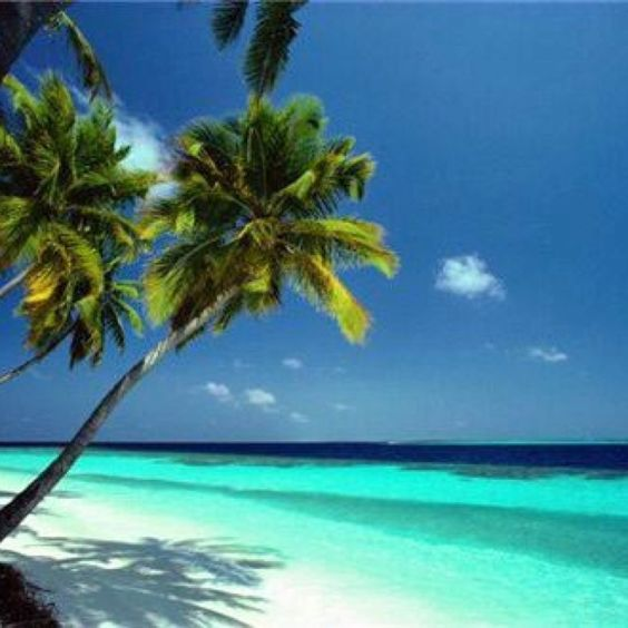 Where I want to be ...always ☀