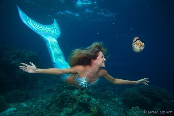 pictures of real mermaids - Google Search