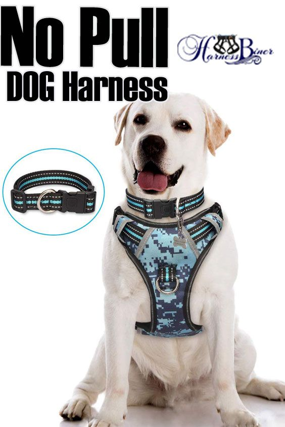 Pin On Military Dog Harness